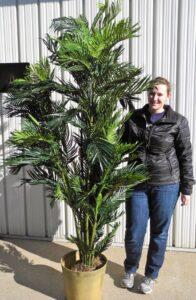 8' Tropical Plant